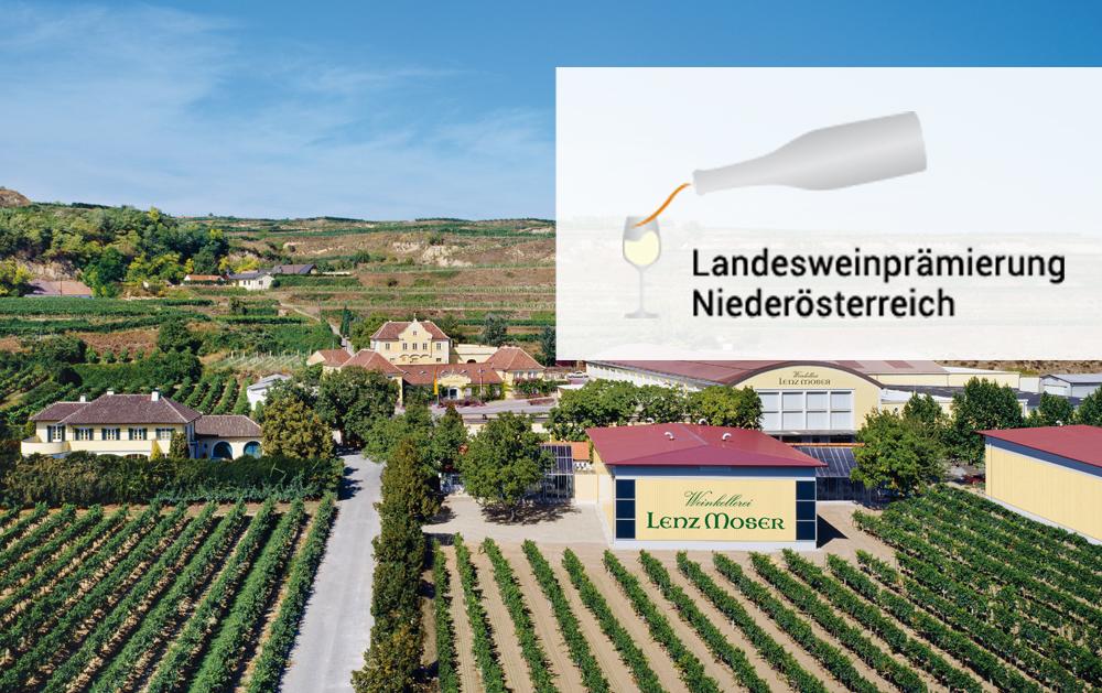 16 x Gold bei der Landesweinprämierung Niederösterreich 2020