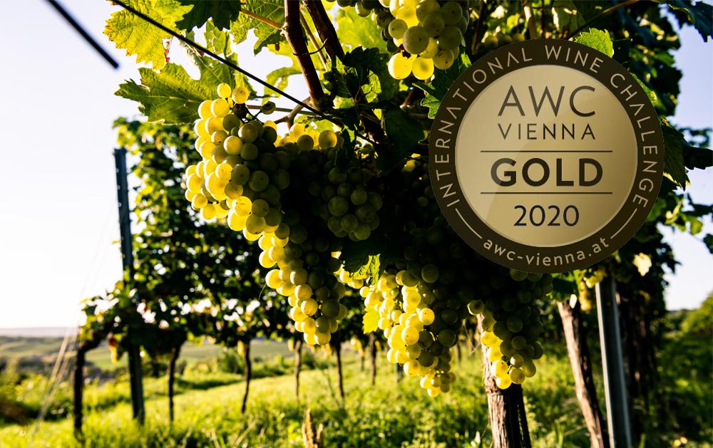 12 x Gold bei AWC Vienna 2020
